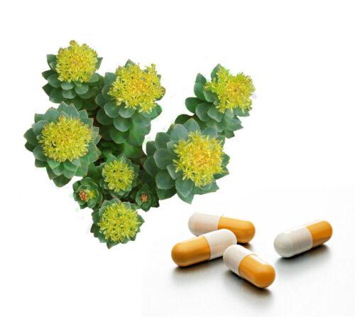 Rhodiola Rosea capsules