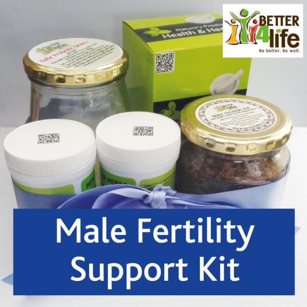 B4L fertility Male kit